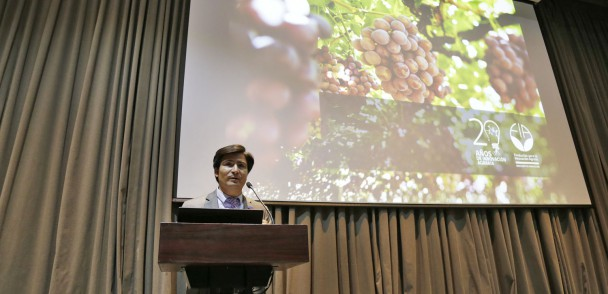¿Qué debe hacer la fruticultura chilena para mejorar su liderazgo y competitividad?