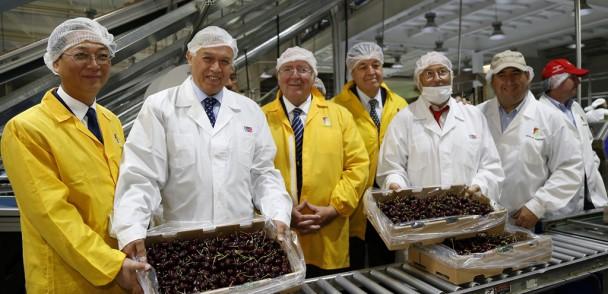 Ministro de Agricultura supervisa exportación de cerezas chilenas a China