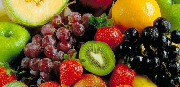 ASOEX y Corfo desarrollan proyecto para productores de frutas orgánicas en Curicó