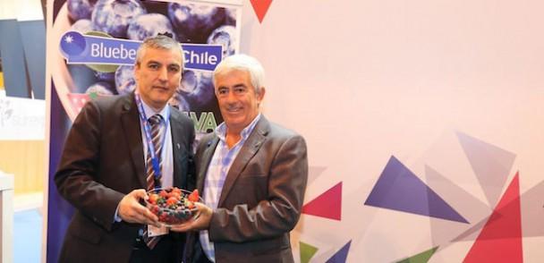 Nuevo acuerdo de promoción de arándanos en el mercado español
