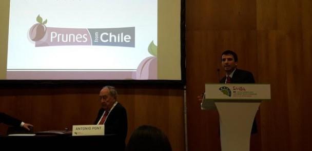 Chile Prunes participó en Congreso del International Nut & Dried Fruit Council de Sevilla