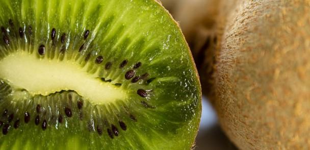 Comité de Kiwi impulsa y promociona exportaciones  en el sur de India