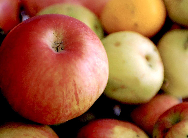 Buscan potenciar presencia de la fruta chilena en el extranjero