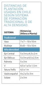 distancia de plantación