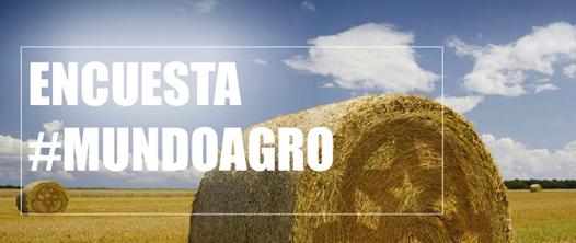 Encuesta #Mundoagro: El antes y el después en la fruticultura chilena