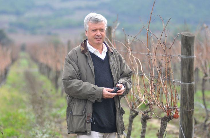 Fallece José Guilisasti Gana, importante empresario vitivinícola