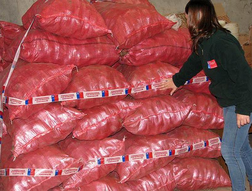 Decomizan más de 2 toneladas de papa nortina en Vega Modelo Temuco