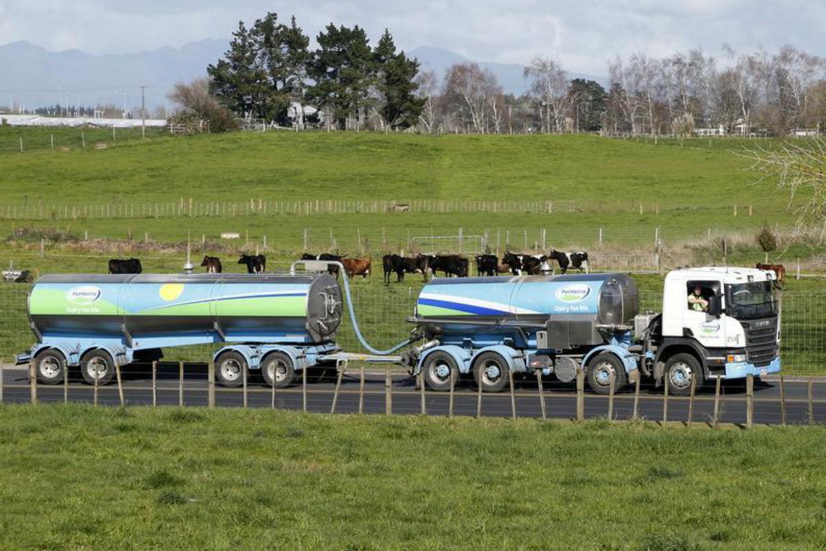 Fonterra presenta un 3,6% de repunte en su último remate de lácteos