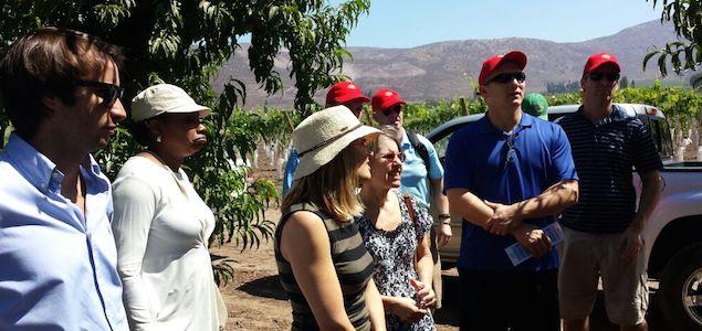Retailers de EEUU visitan la industria chilena de la  fruta de exportación