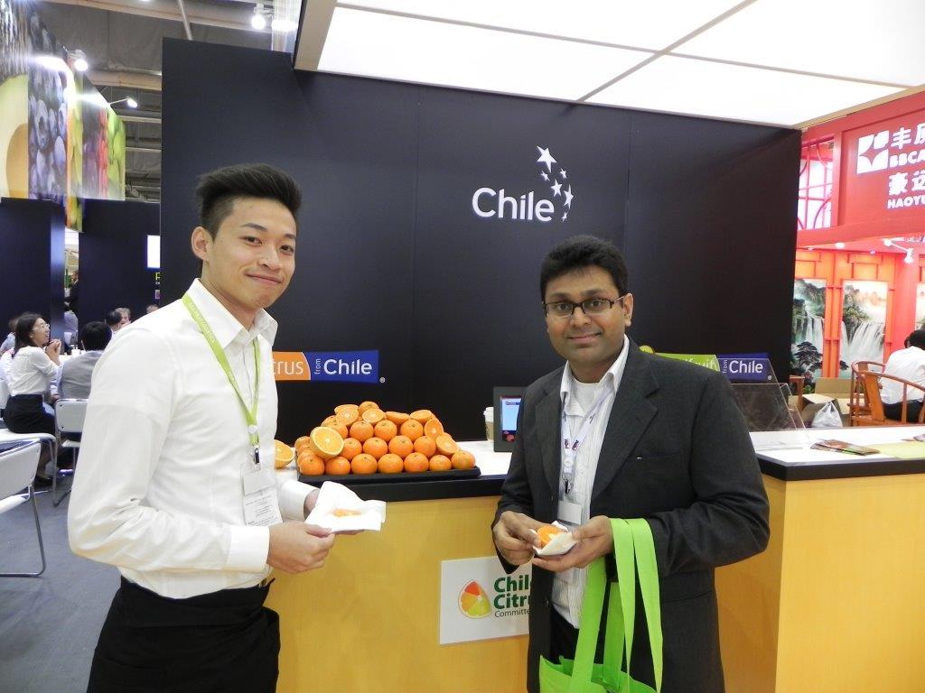 Nuevo mercado: promoción de los cítricos chilenos apuntarán hacia Brasil