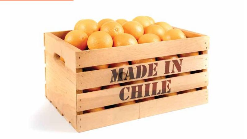 Made in Chile: promoción chilena en el extranjero genera un ROI de 3,9 dólares