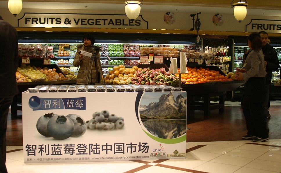Comienza promoción de arándanos y cerezas chilenas en China