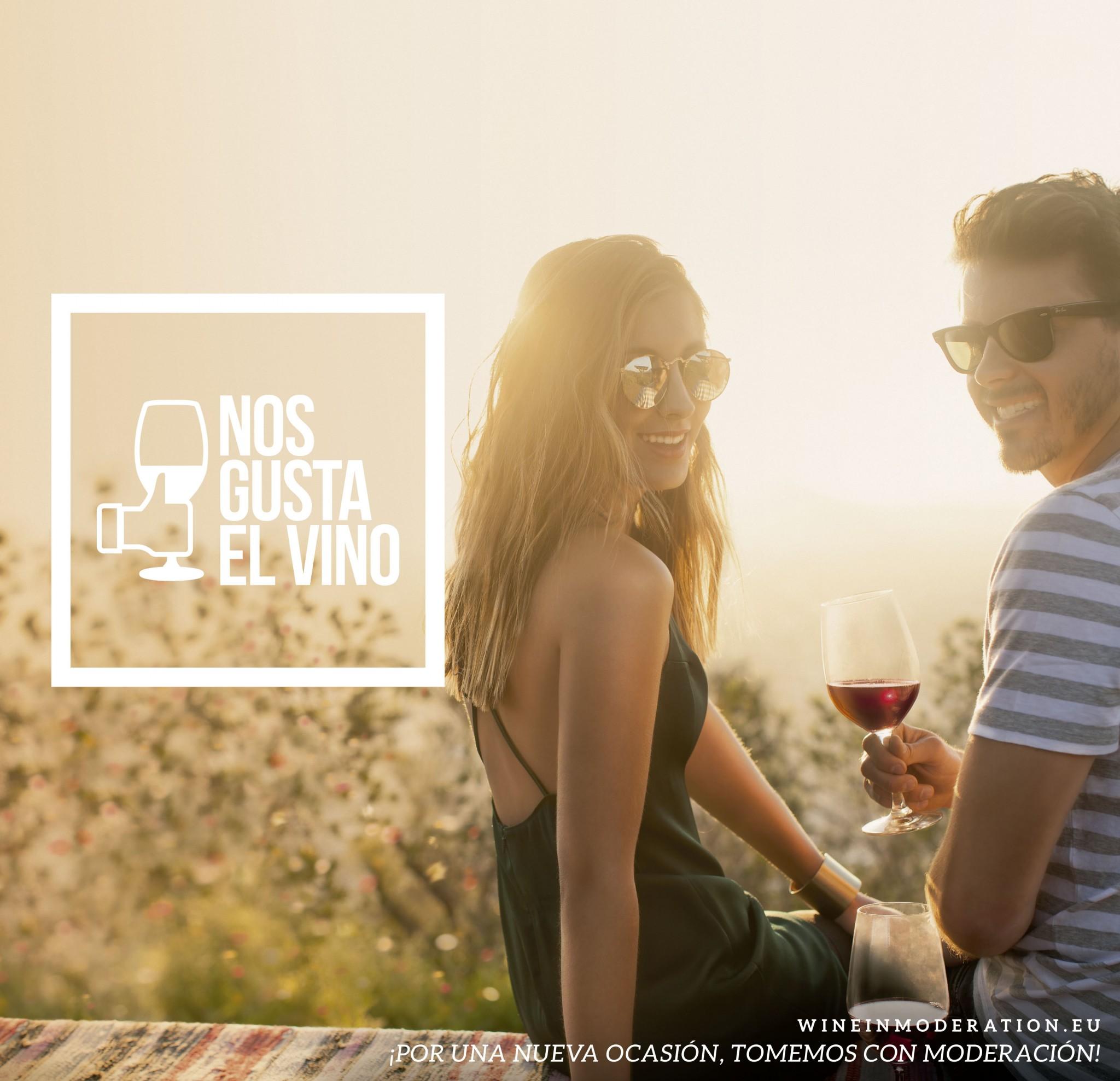 Campaña busca acercar Vinos de Chile en el país