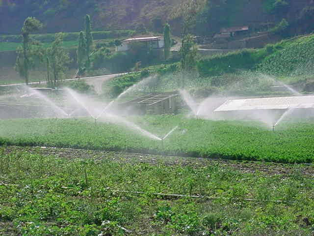 Sequía: ¿Se puede regar con agua de mar?