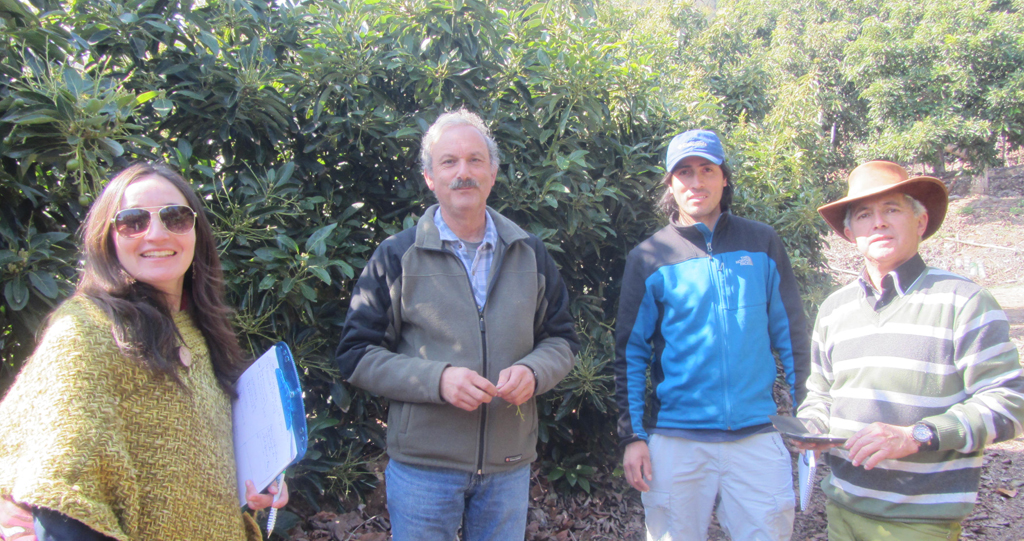 Agricultores cumplen cuatro años junto a GTT Palto de Quillota