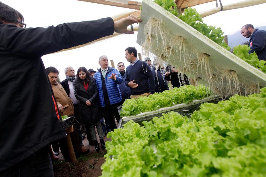 ¿Cuáles son los problemas de la pequeña agricultura?