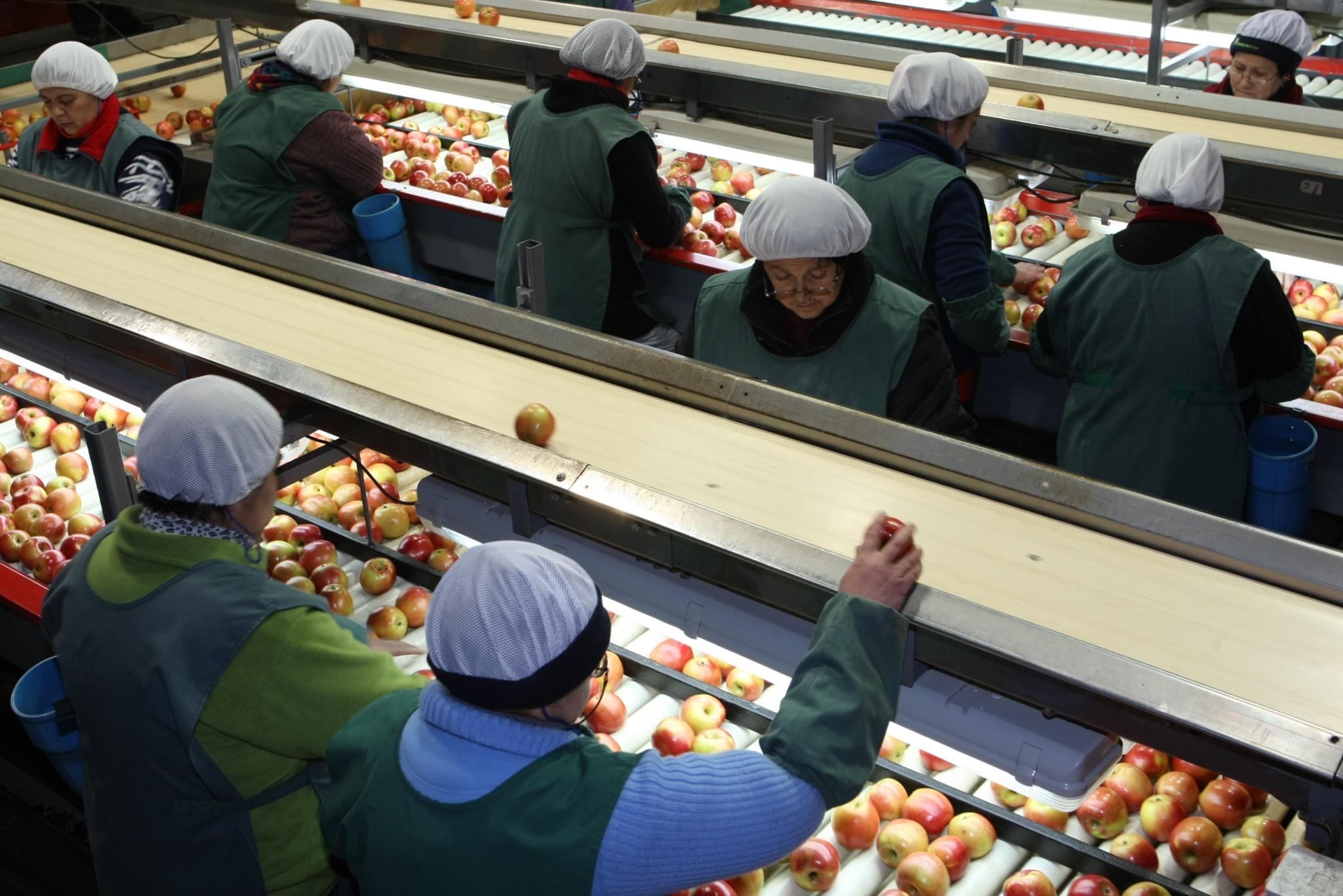 Fedefruta saluda a las empresas que participaron en el almuerzo de sus 30 años