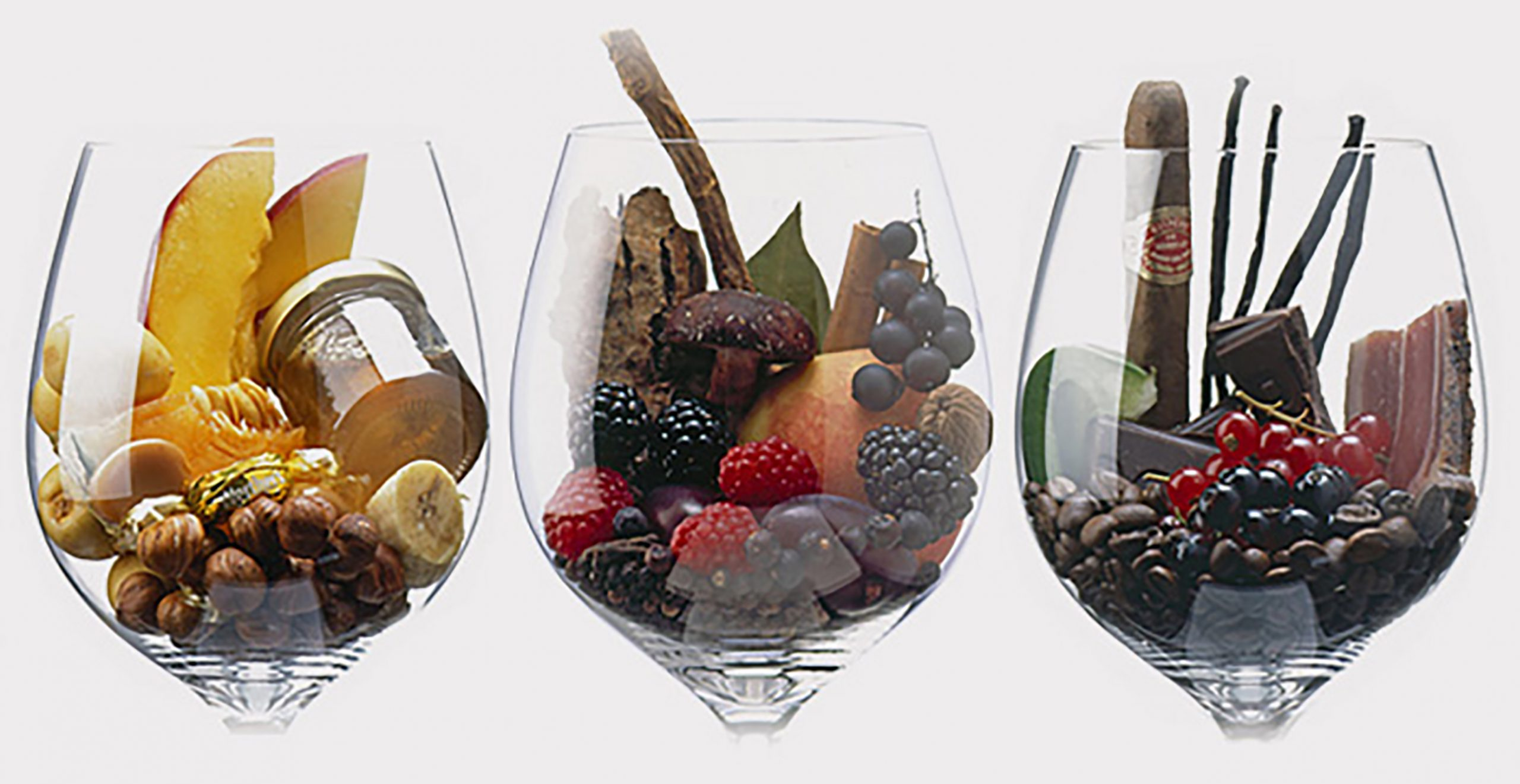 """Partner S.A. presenta innovador seminario """"Flavor: de la viña al vino"""""""