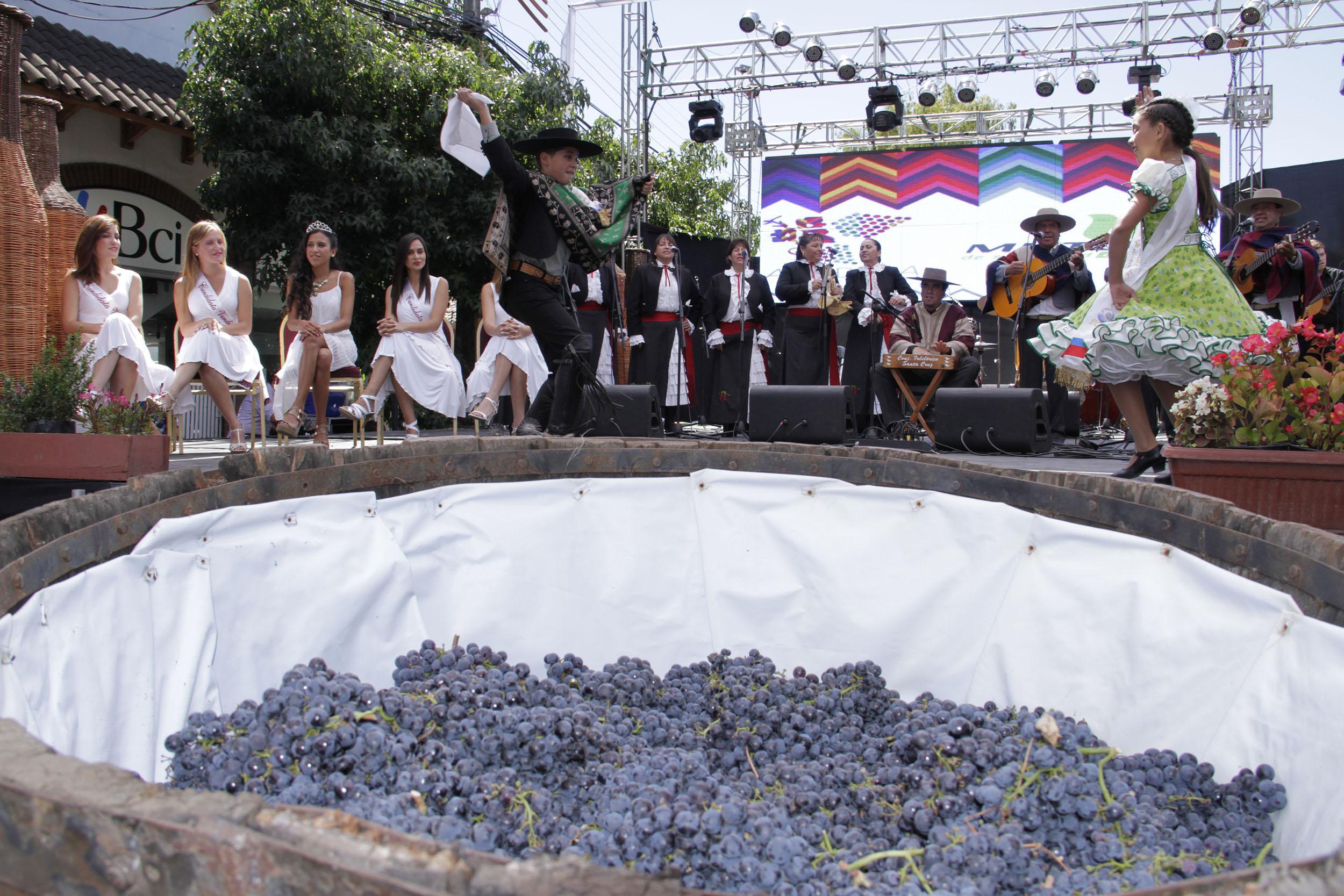 12 bodegas participarán de la fiesta de la vendimia 2016 en el Valle de Colchagua