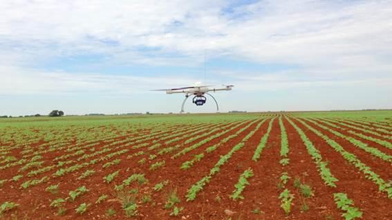 Innovación: Detección temprana de malas hierbas mediante drones