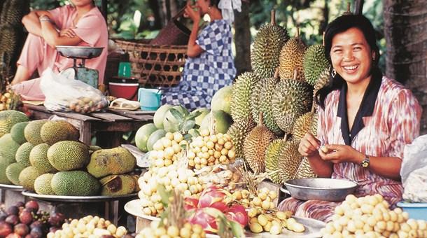 Fruta chilena: avance en el ingreso a China y Vietnam