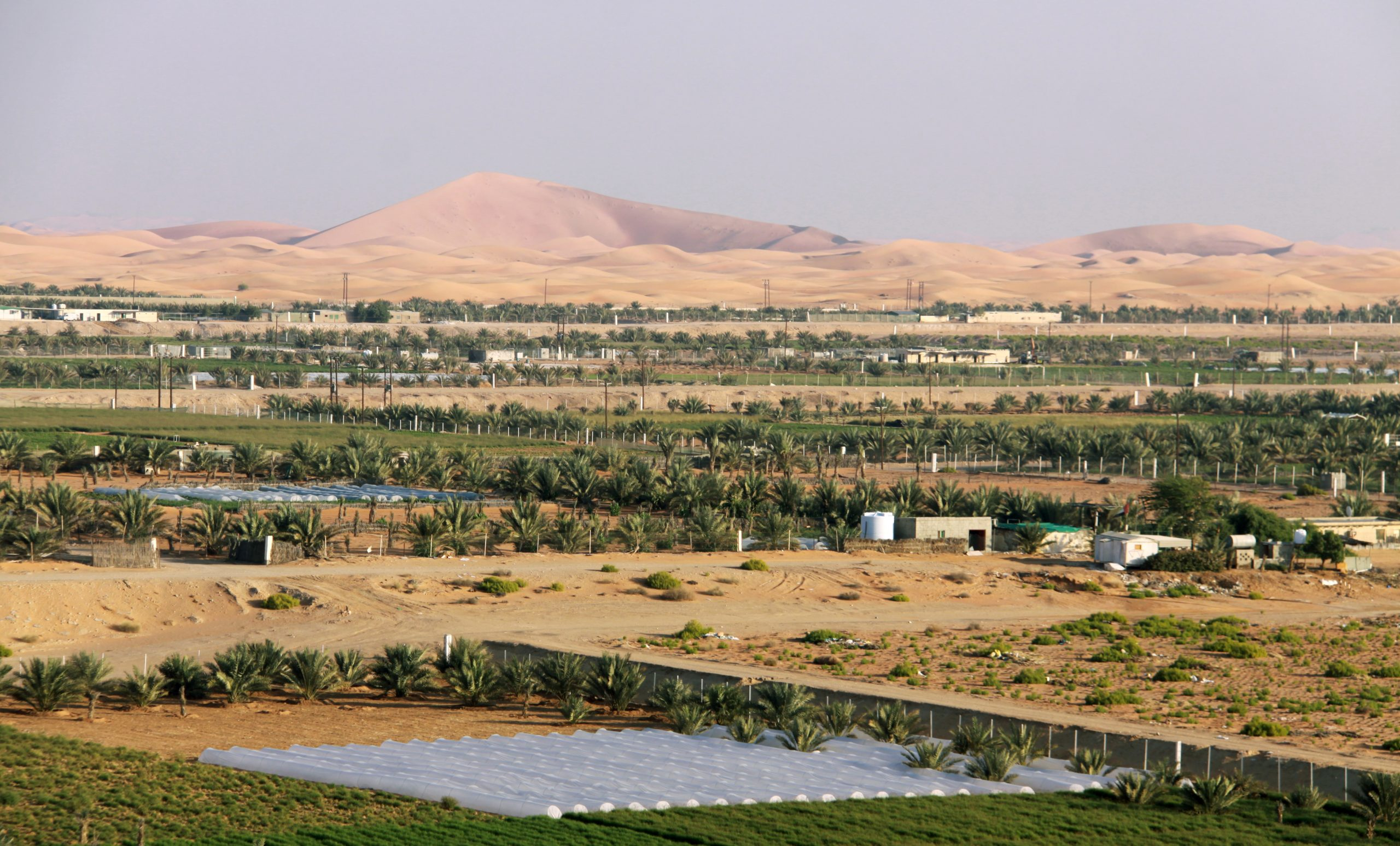 Un oasis agrícola