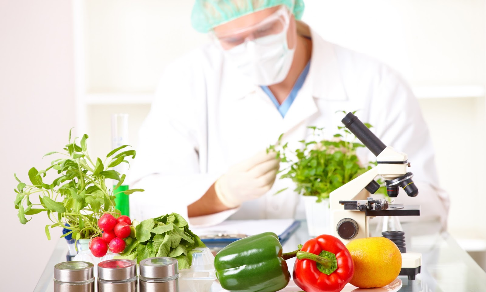 Buscan elevar estándares alimentarios  de Chile