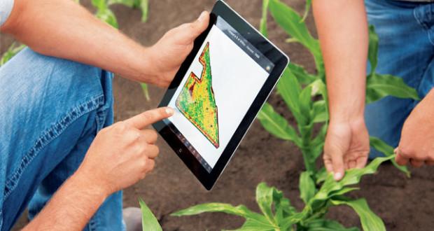Las apps más útiles para el desarrollo de la agricultura