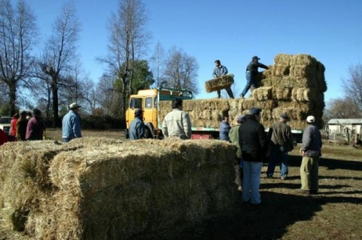 Continúan las cadenas de ayuda al agro