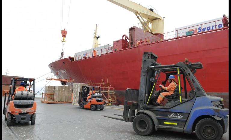 Exportaciones de fruta en el Puerto de Coquimbo aumentaron en un 9%
