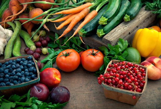 Unión Europea firmaría acuerdo con Chile para el comercio de productos orgánicos