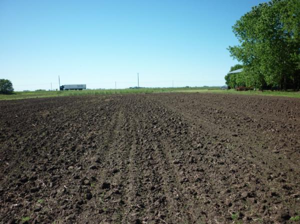 El inicio a la recuperación de los suelos