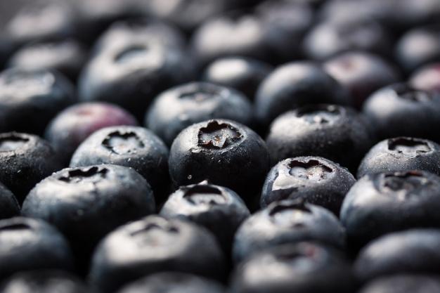 Exportación de arándanos termina con un aumento de un 12,9% en volumen