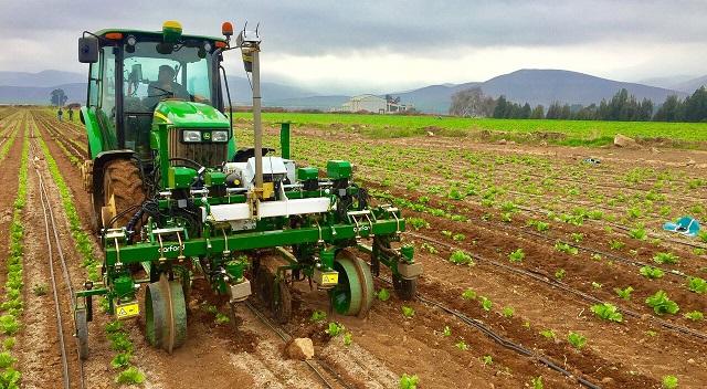 Sargent trae a Chile el primer robot para control mecánico de malezas de hortalizas