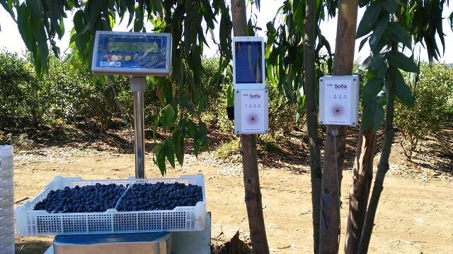 Tecnología que suma al agro