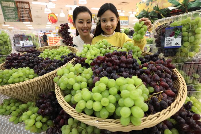 Uva de mesa chilena comienza campaña de promoción en Corea del Sur