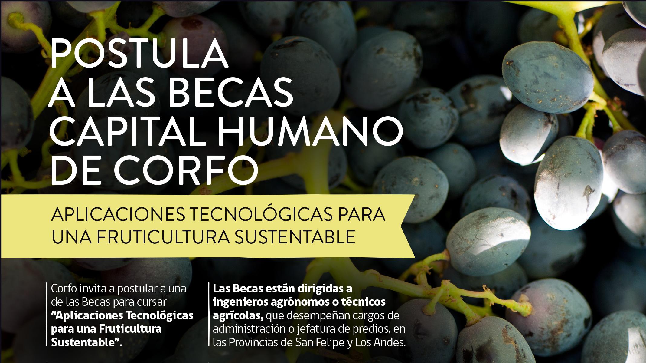 Tecnología para una fruticultura sustentable