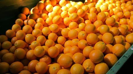 Se anticiparon los envíos de naranjas Navel