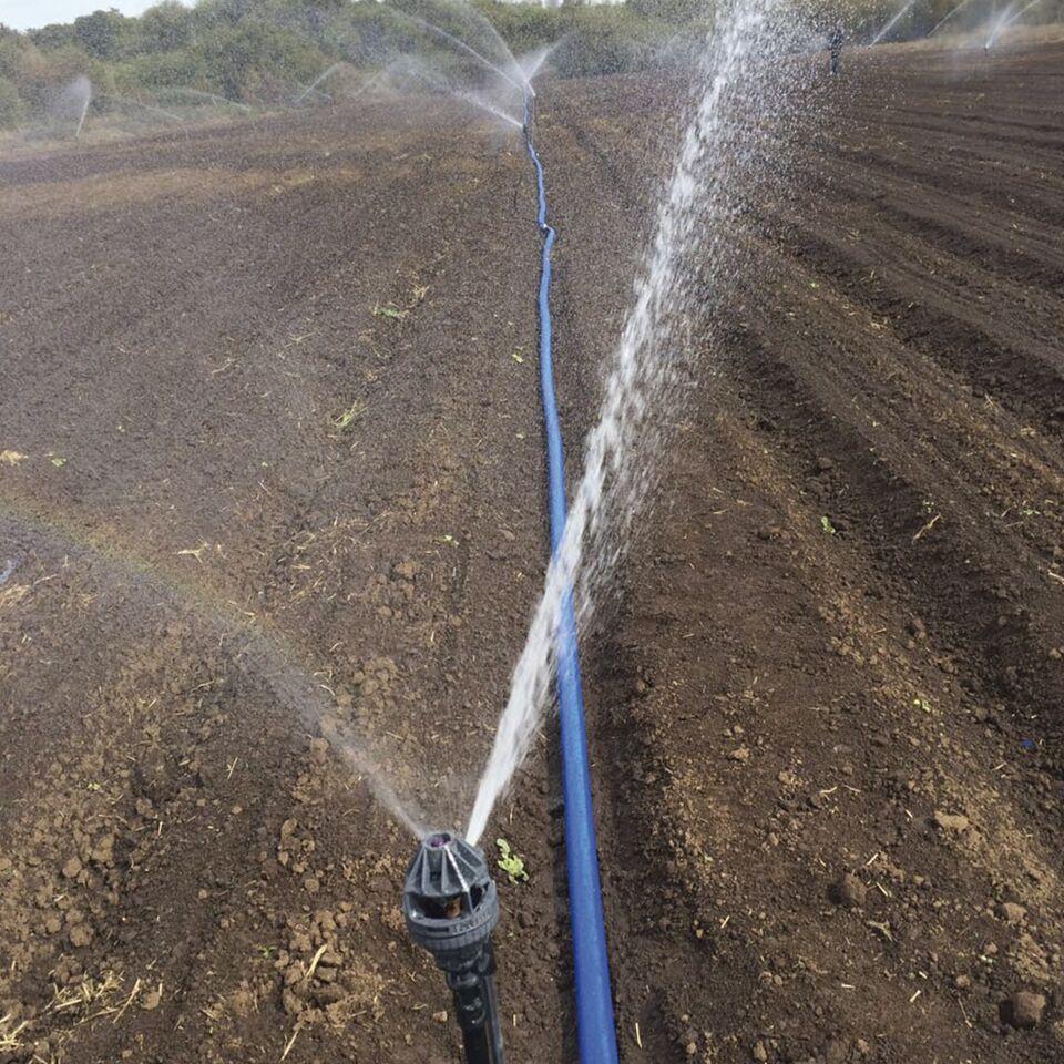 Cobertura total Soagro: Remolacheros ahorran más de 30% en sistema de riego