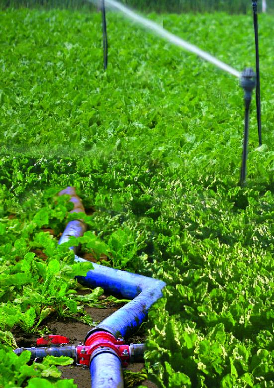 Dasfluid presentó el sistema de conducción de agua Soagro