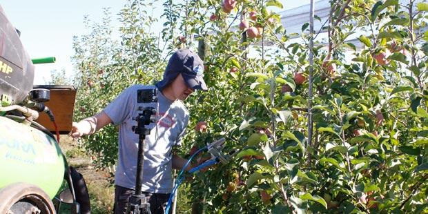 Dispositivo de sensores para conocer el estado de la vegetación
