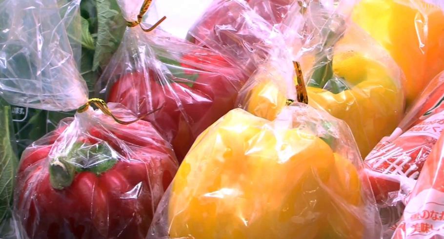 Envase que mantiene frutas y verduras frescas hasta por cuatro meses