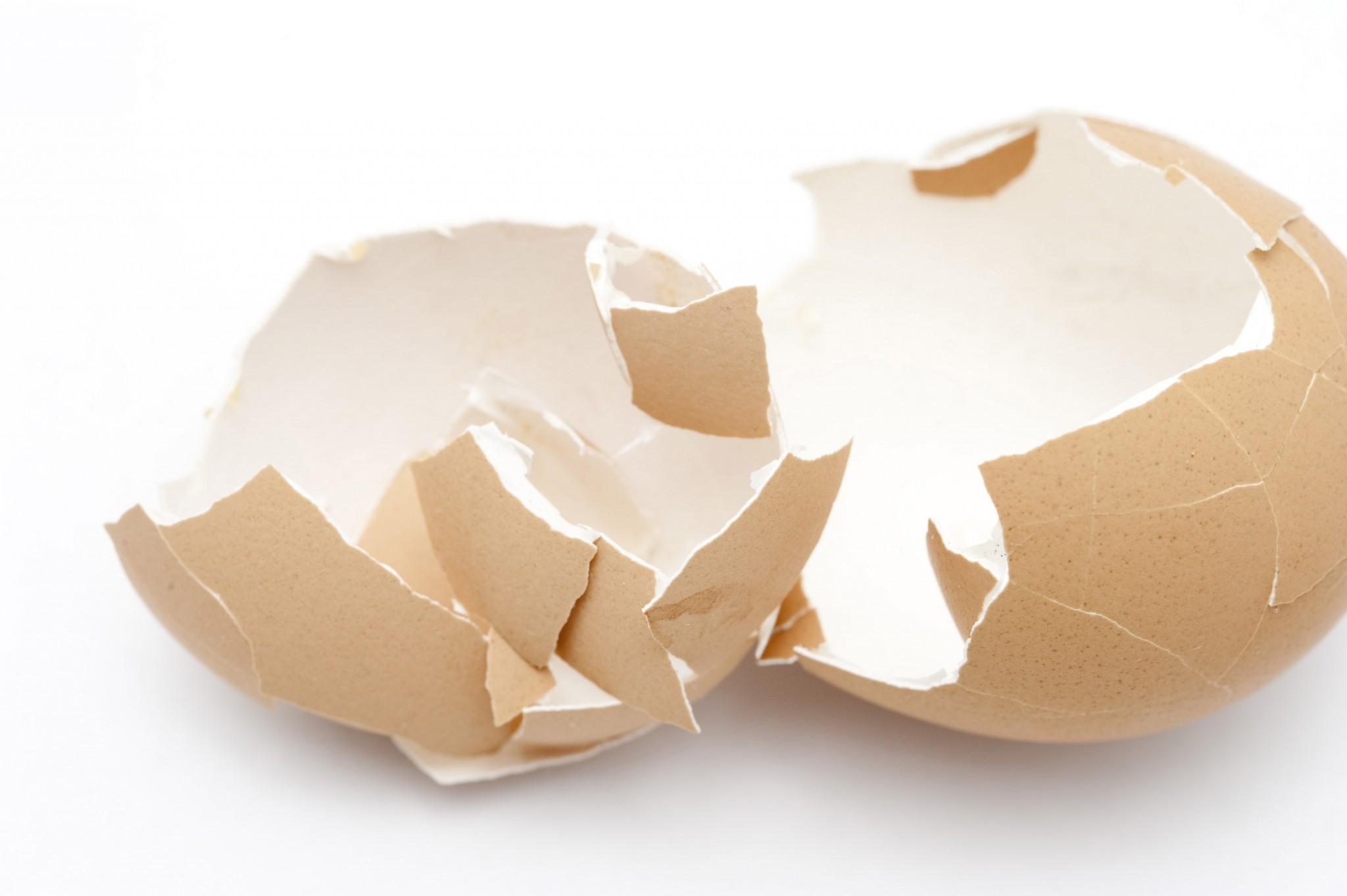 Las cáscaras de huevo como material de embalaje