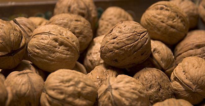 Un 95% de nueces chilenas ya se encuentran vendidas