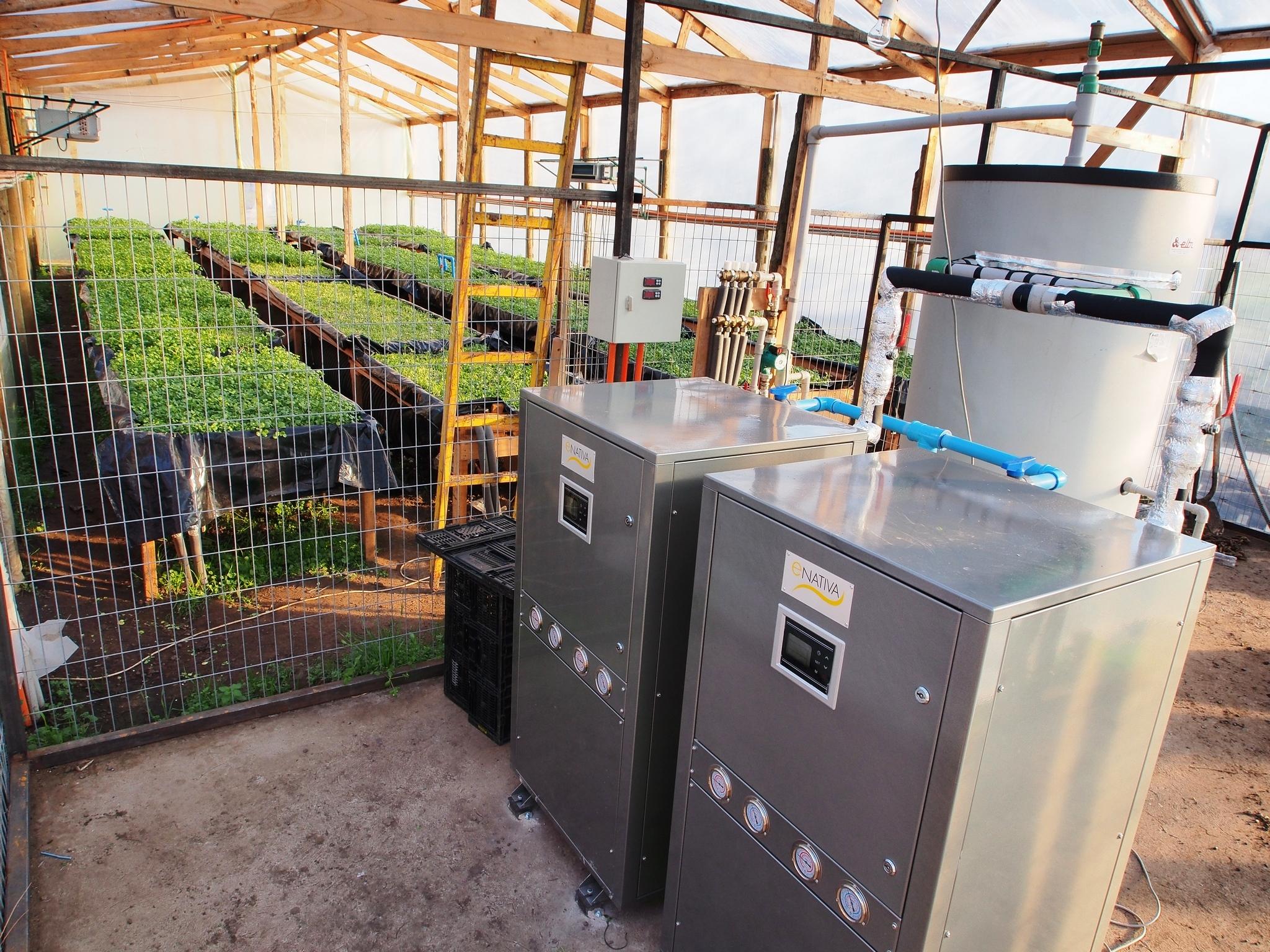 Primer invernadero climatizado con energía geotérmica
