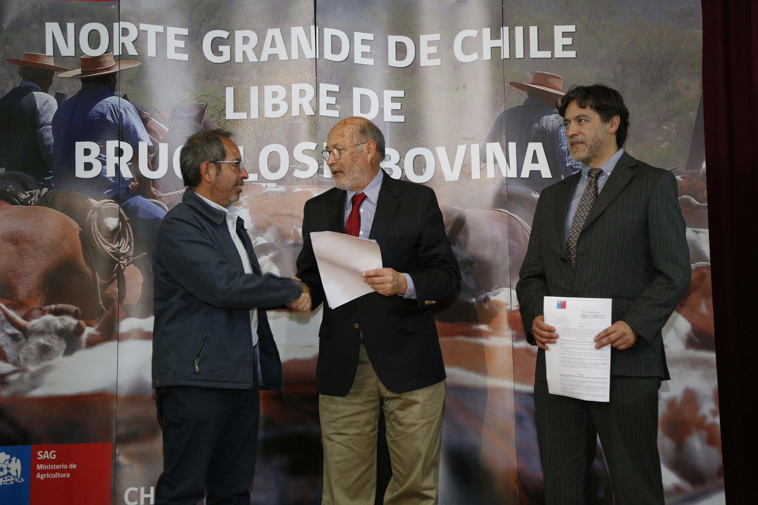 Norte de Chile libre de brucelosis bovina