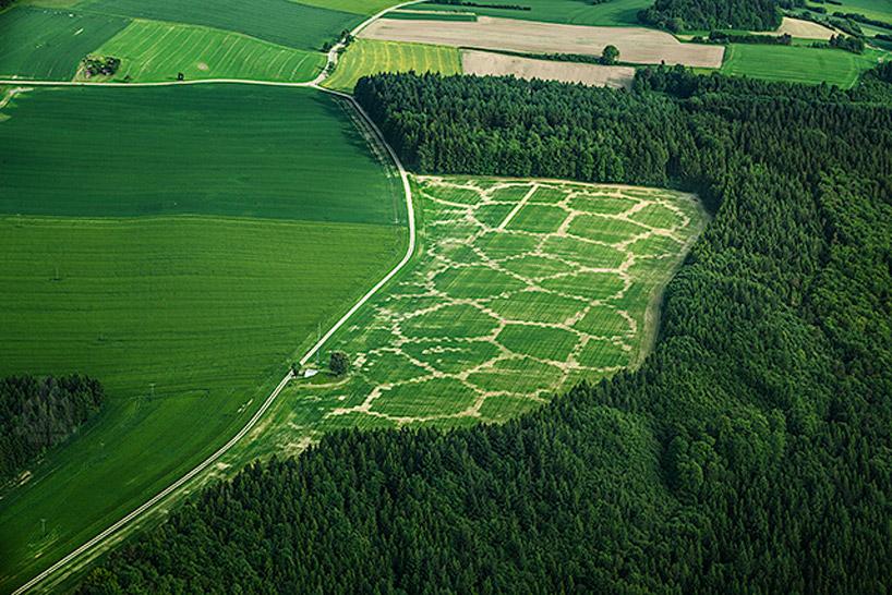 Diseño digital de cultivos optimiza la actividad y cuida el medioambiente