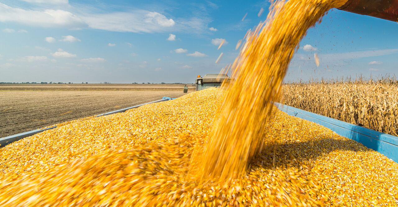 Stock de herramientas para los cereales
