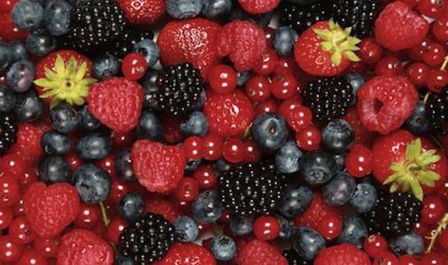 Proyecciones para la producción de berries orgánicos