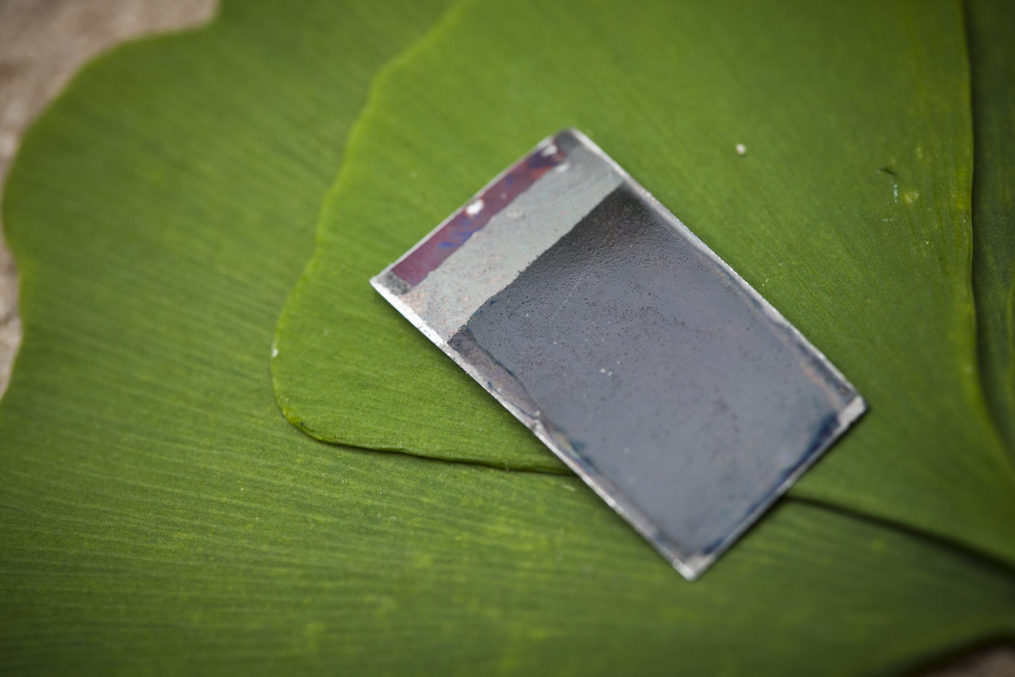 Una hoja artificial que fotosintetiza